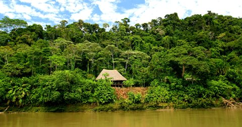 Explore Missions in the Amazon